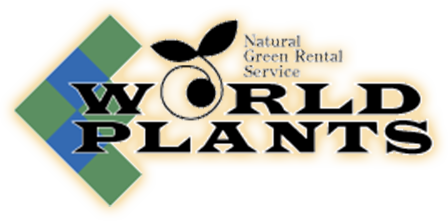 WORLD PLANTS - Natural Green Rental Service